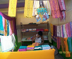 District Level Handloom Expo Borbory 2011